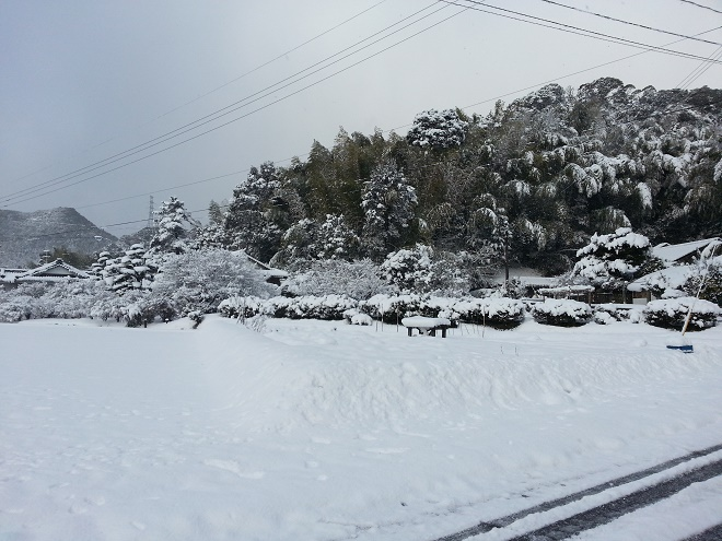 2017.2.11雪①.jpg