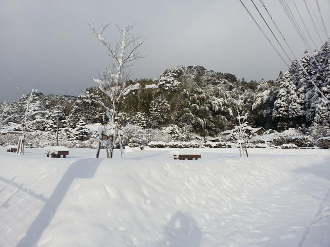 2017.2.11雪③.jpg
